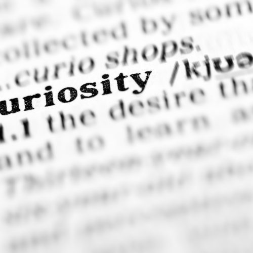 CURIOSITY: THE LITTLE WORD THAT COULD (Help relieve tension during your Divorce)